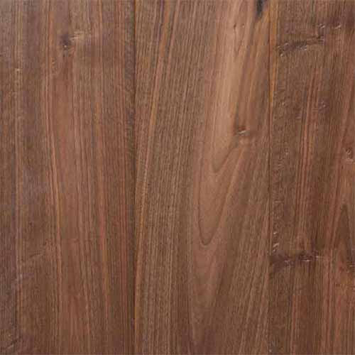European Walnut. Code: B135L